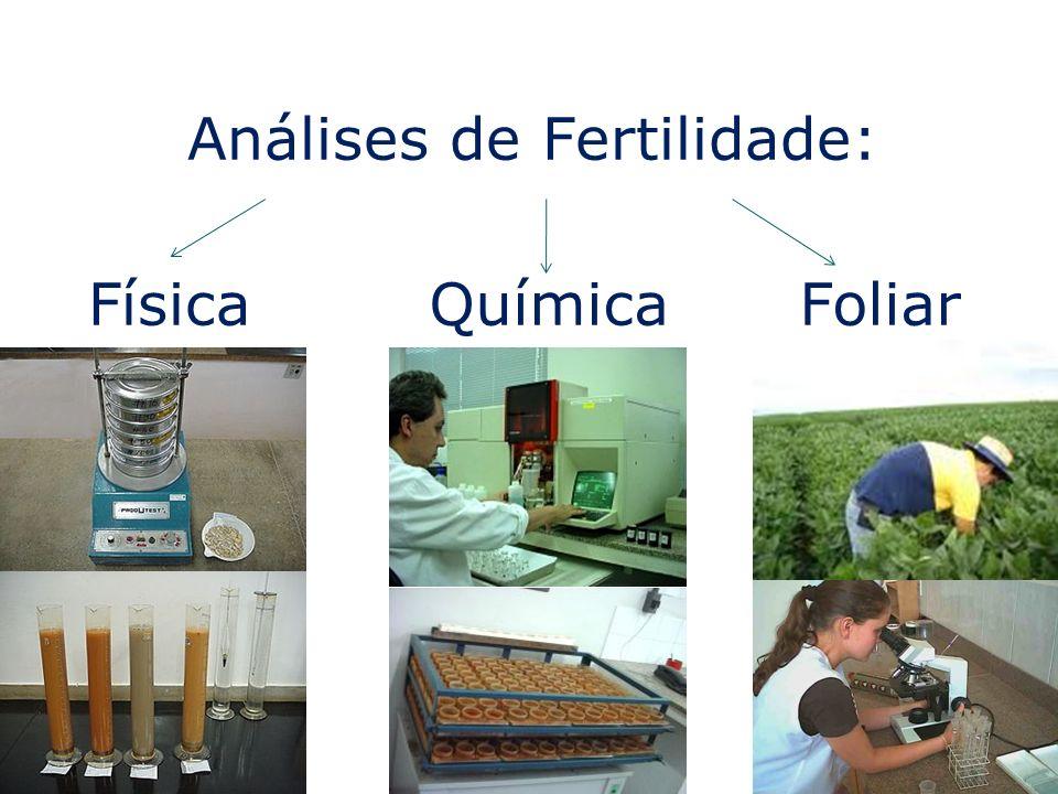 Análises de Fertilidade: FísicaQuímicaFoliar