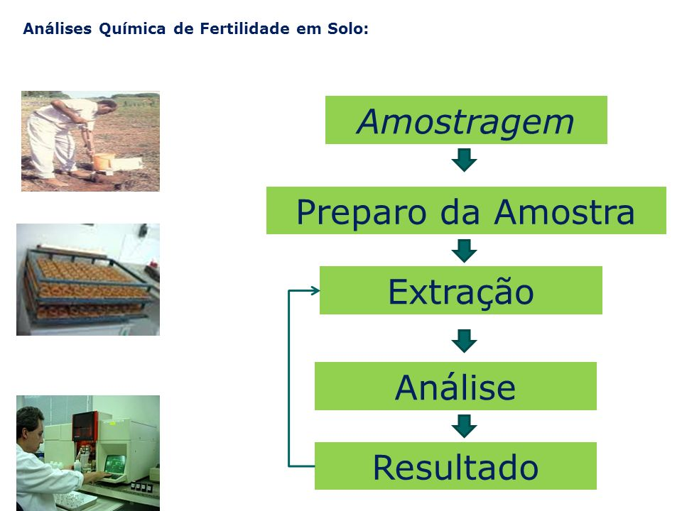 Análises Química de Fertilidade em Solo: Amostragem Preparo da Amostra Extração Análise Resultado