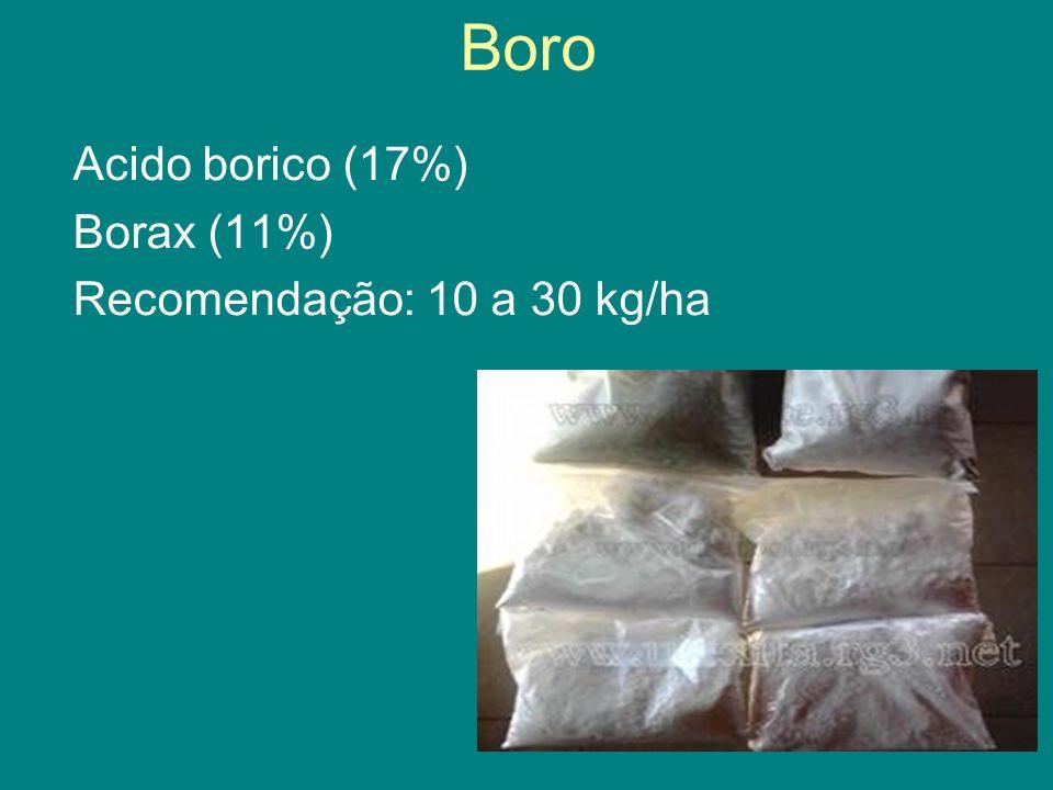 Boro Acido borico (17%) Borax (11%) Recomendação: 10 a 30 kg/ha