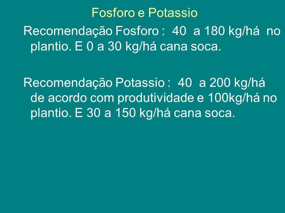 Fosforo e Potassio Recomendação Fosforo : 40 a 180 kg/há no plantio. E 0 a 30 kg/há cana soca. Recomendação Potassio : 40 a 200 kg/há de acordo com pr