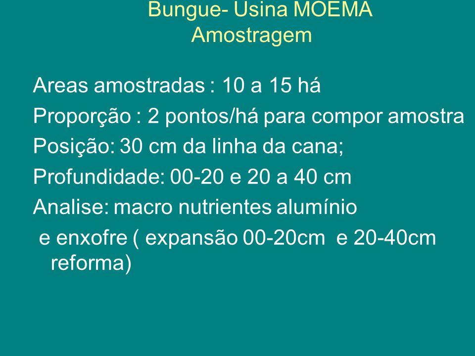 Bungue- Usina MOEMA Amostragem Areas amostradas : 10 a 15 há Proporção : 2 pontos/há para compor amostra Posição: 30 cm da linha da cana; Profundidade