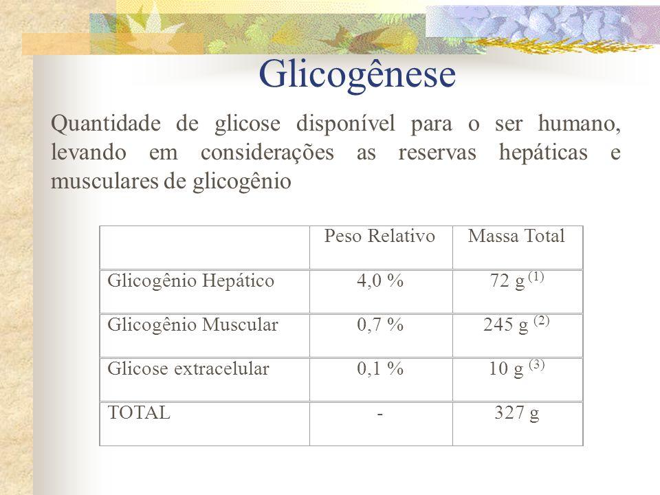 Peso RelativoMassa Total Glicogênio Hepático4,0 %72 g (1) Glicogênio Muscular0,7 %245 g (2) Glicose extracelular0,1 %10 g (3) TOTAL-327 g Quantidade d