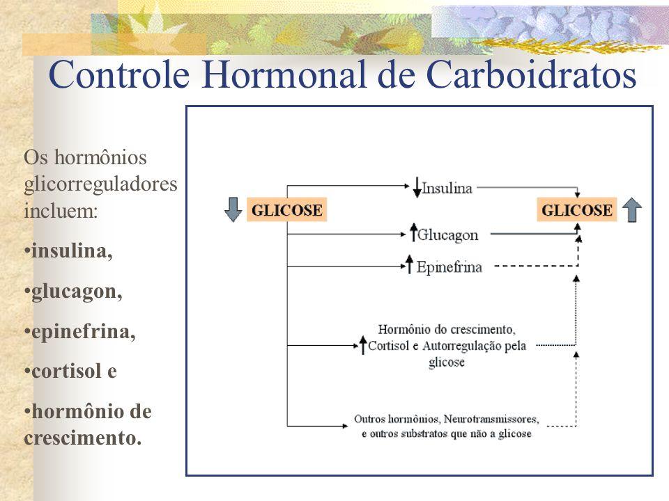 Os hormônios glicorreguladores incluem: insulina, glucagon, epinefrina, cortisol e hormônio de crescimento.