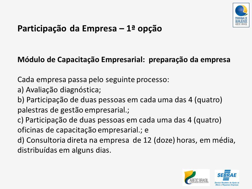 Participação da Empresa – 1ª opção Módulo de Capacitação Empresarial: preparação da empresa Cada empresa passa pelo seguinte processo: a) Avaliação di