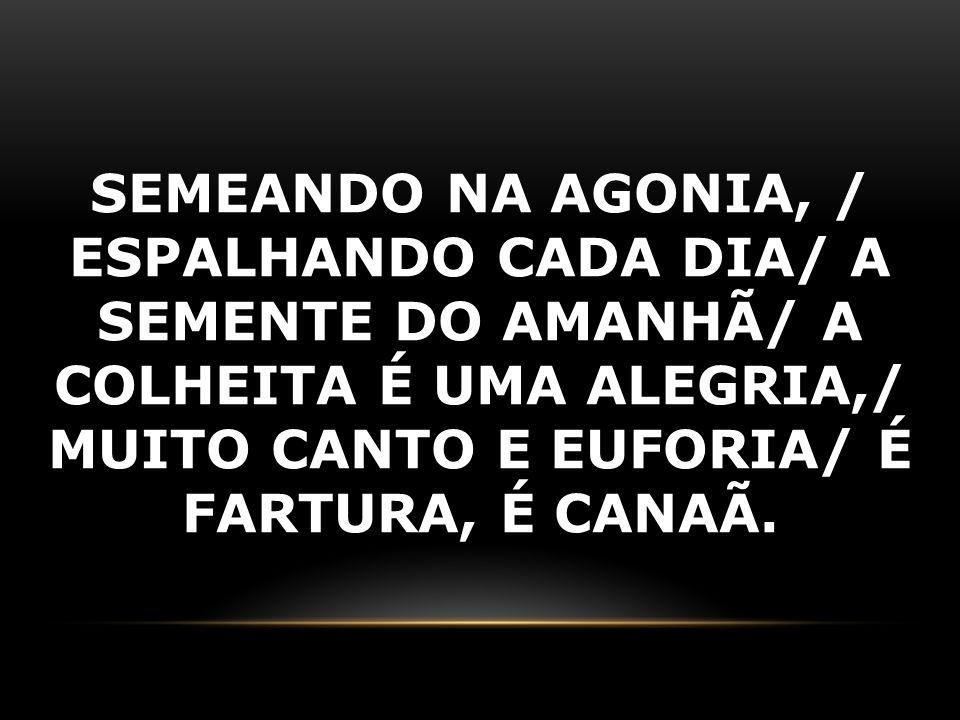SEMEANDO NA AGONIA, / ESPALHANDO CADA DIA/ A SEMENTE DO AMANHÃ/ A COLHEITA É UMA ALEGRIA,/ MUITO CANTO E EUFORIA/ É FARTURA, É CANAÃ.