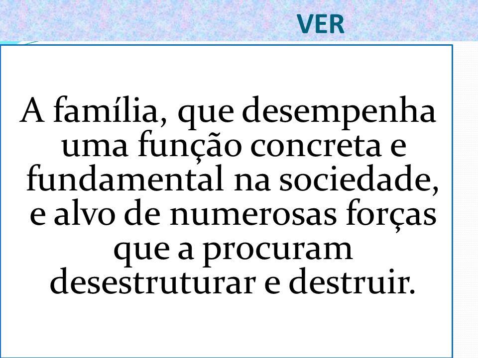 VER A família, que desempenha uma função concreta e fundamental na sociedade, e alvo de numerosas forças que a procuram desestruturar e destruir.