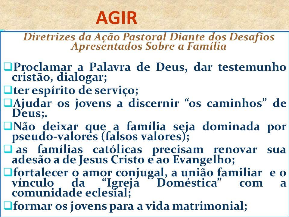 AGIR Diretrizes da Ação Pastoral Diante dos Desafios Apresentados Sobre a Família Proclamar a Palavra de Deus, dar testemunho cristão, dialogar; ter espírito de serviço; Ajudar os jovens a discernir os caminhos de Deus;.