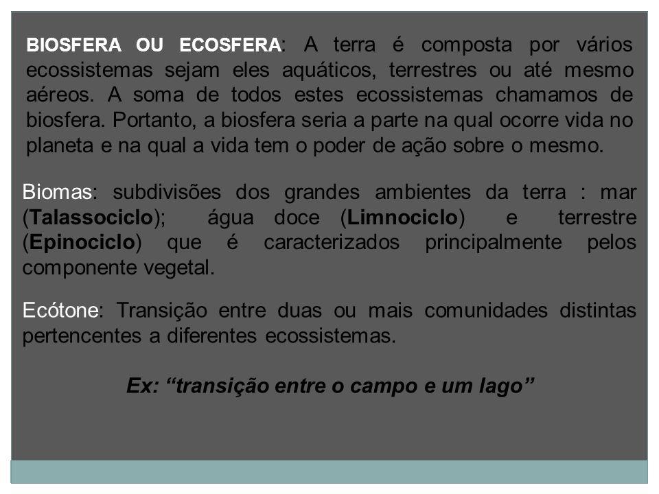 BIOSFERA OU ECOSFERA : A terra é composta por vários ecossistemas sejam eles aquáticos, terrestres ou até mesmo aéreos. A soma de todos estes ecossist