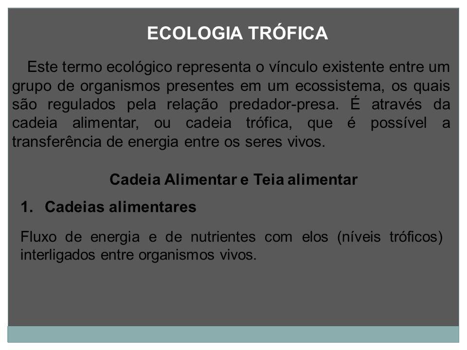 ECOLOGIA TRÓFICA Este termo ecológico representa o vínculo existente entre um grupo de organismos presentes em um ecossistema, os quais são regulados