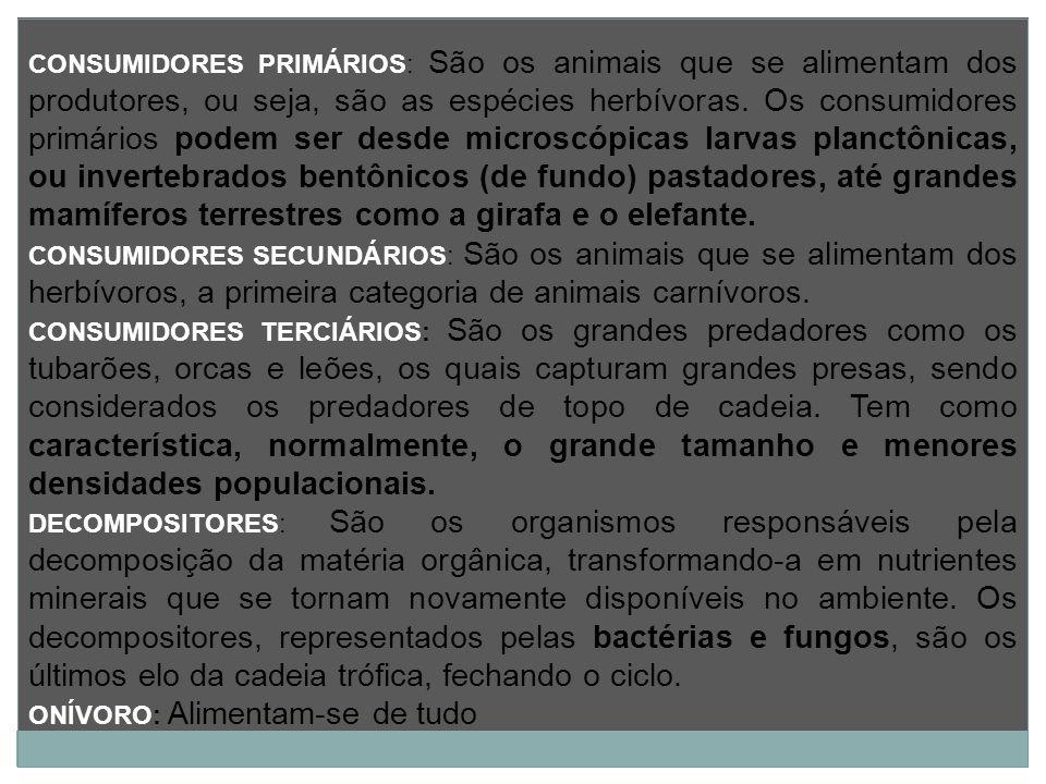 CONSUMIDORES PRIMÁRIOS: São os animais que se alimentam dos produtores, ou seja, são as espécies herbívoras. Os consumidores primários podem ser desde