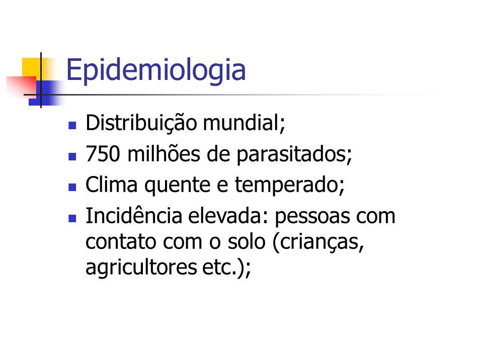 Epidemiologia Distribuição mundial; 750 milhões de parasitados; Clima quente e temperado; Incidência elevada: pessoas com contato com o solo (crianças