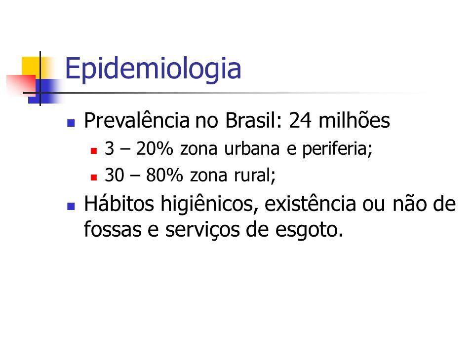 Epidemiologia Prevalência no Brasil: 24 milhões 3 – 20% zona urbana e periferia; 30 – 80% zona rural; Hábitos higiênicos, existência ou não de fossas