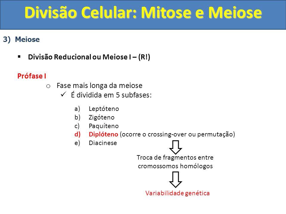 3) Meiose Divisão Reducional ou Meiose I – (R!) Prófase I o Fase mais longa da meiose É dividida em 5 subfases: a)Leptóteno b)Zigóteno c)Paquíteno d)Diplóteno (ocorre o crossing-over ou permutação) e)Diacinese Troca de fragmentos entre cromossomos homólogos Variabilidade genética Divisão Celular: Mitose e Meiose