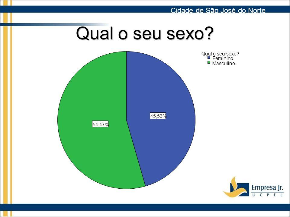 Qual o seu sexo? 54,47% 45,53% Masculino Feminino Qual o seu sexo? Cidade de São José do Norte