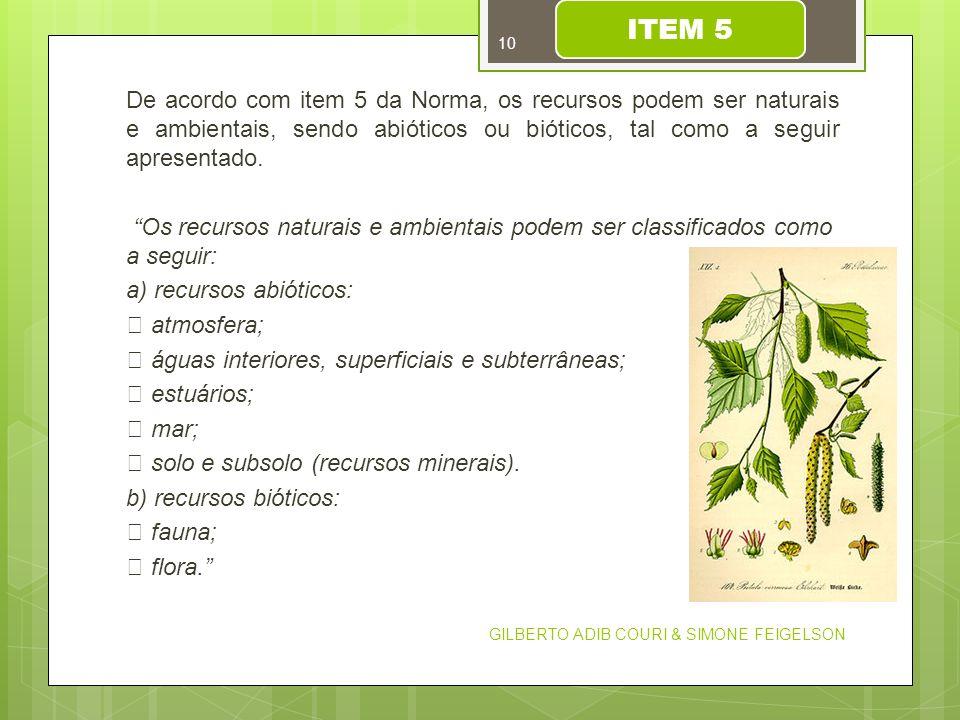 De acordo com item 5 da Norma, os recursos podem ser naturais e ambientais, sendo abióticos ou bióticos, tal como a seguir apresentado. Os recursos na