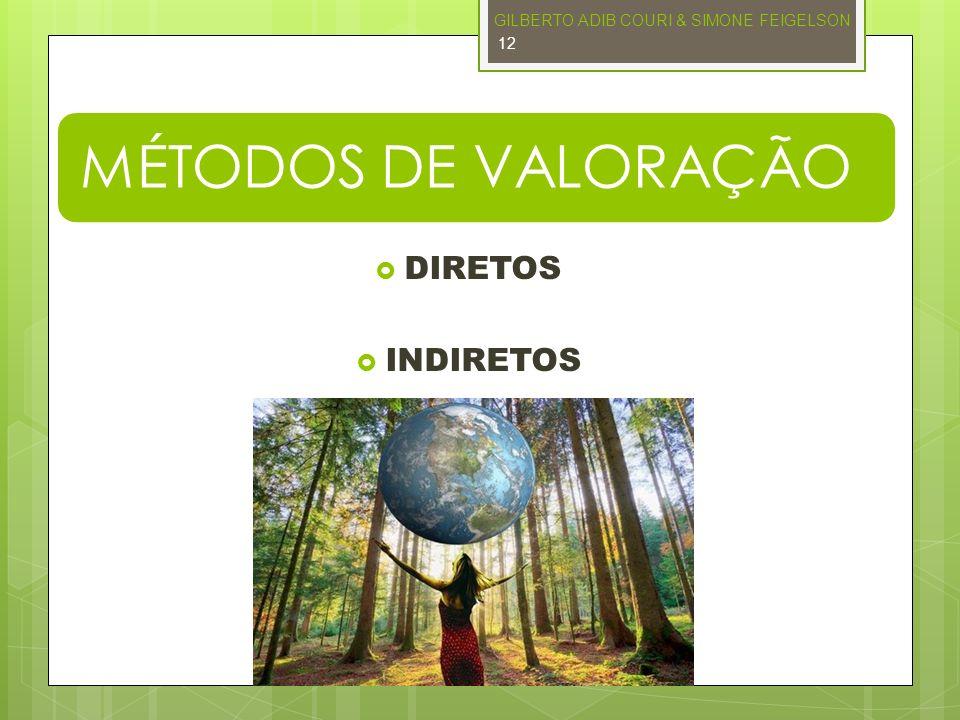 MÉTODOS DE VALORAÇÃO DIRETOS INDIRETOS GILBERTO ADIB COURI & SIMONE FEIGELSON 12