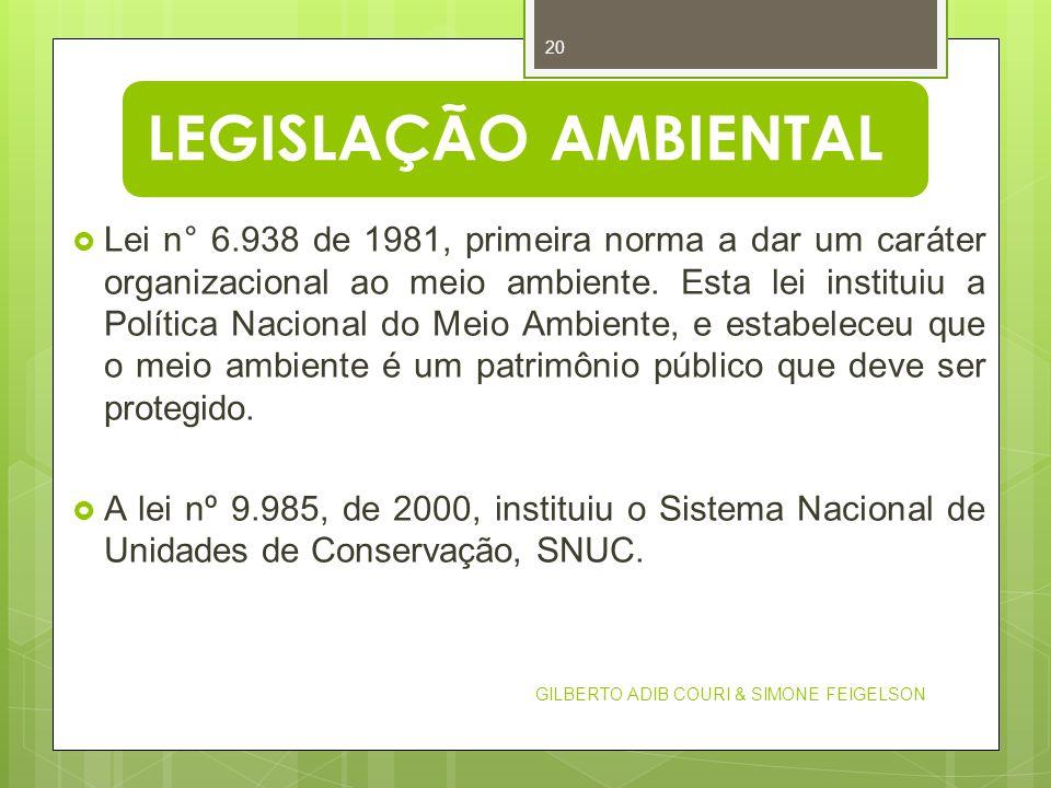 LEGISLAÇÃO AMBIENTAL GILBERTO ADIB COURI & SIMONE FEIGELSON 20 Lei n° 6.938 de 1981, primeira norma a dar um caráter organizacional ao meio ambiente.