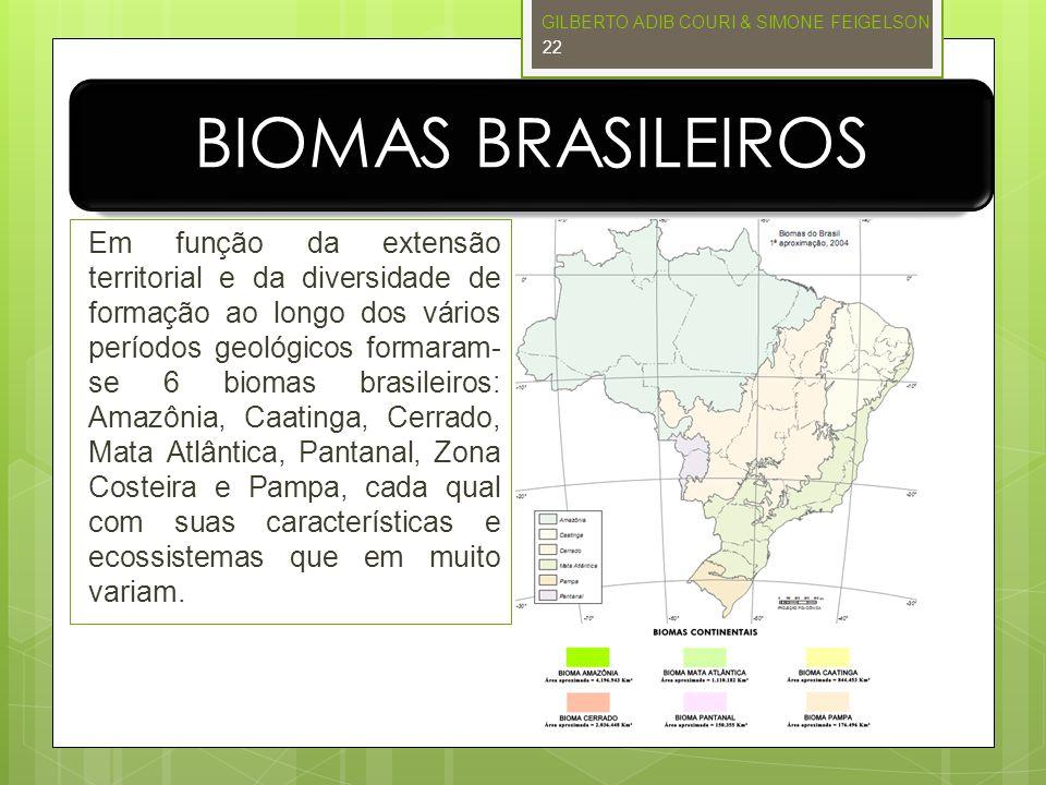 BIOMAS BRASILEIROS Em função da extensão territorial e da diversidade de formação ao longo dos vários períodos geológicos formaram- se 6 biomas brasil