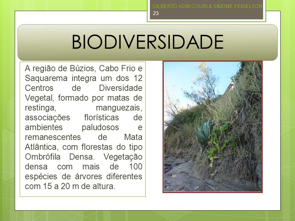 BIODIVERSIDADE A região de Búzios, Cabo Frio e Saquarema integra um dos 12 Centros de Diversidade Vegetal, formado por matas de restinga, manguezais,