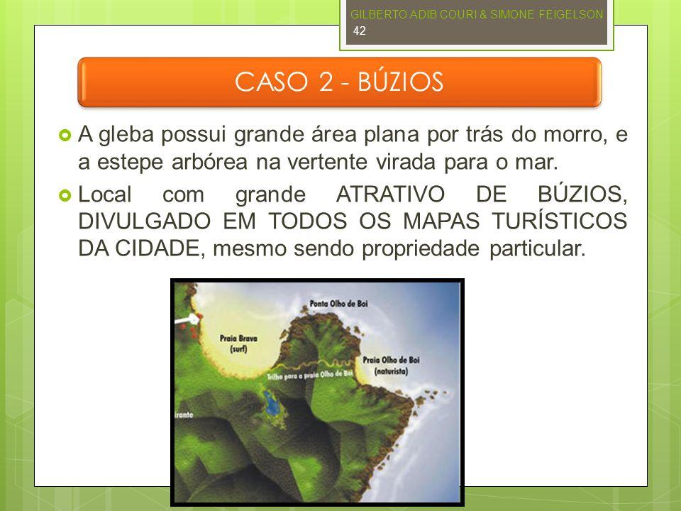 CASO 2 - BÚZIOS A gleba possui grande área plana por trás do morro, e a estepe arbórea na vertente virada para o mar. Local com grande ATRATIVO DE BÚZ