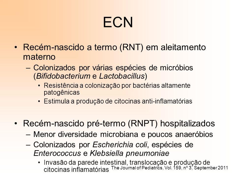 ECN Recém-nascido a termo (RNT) em aleitamento materno –Colonizados por várias espécies de micróbios (Bifidobacterium e Lactobacillus) Resistência a c