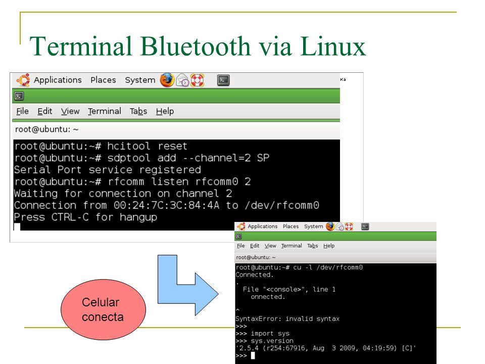 Terminal Bluetooth via Linux Celular conecta