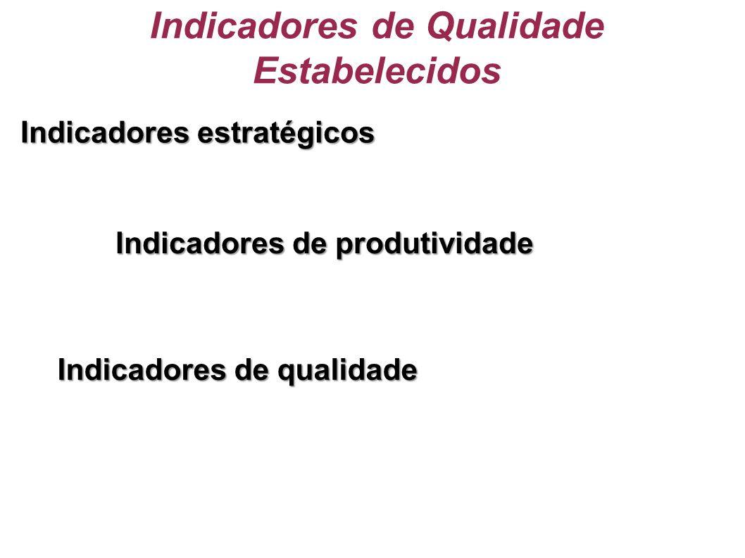 Indicadores de Qualidade Estabelecidos Indicadores estratégicos Indicadores de produtividade Indicadores de qualidade