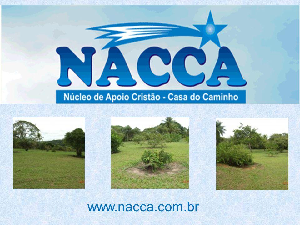 www.nacca.com.br