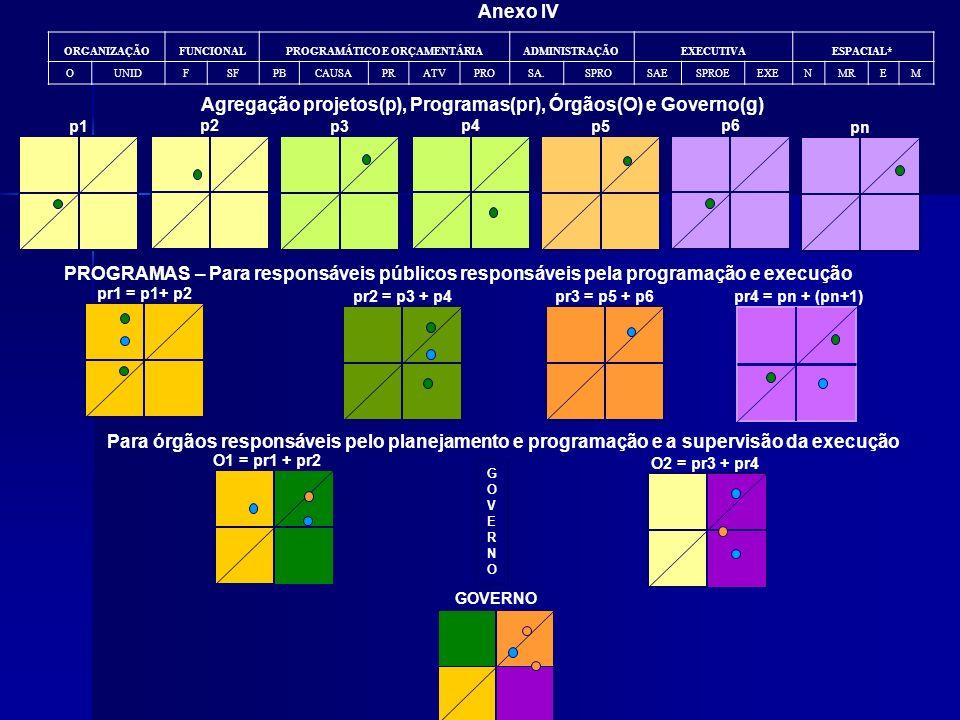 Anexo IV p1 p2 p3 p4 p5 p6 pn GOVERNO O1 = pr1 + pr2 O2 = pr3 + pr4 Para órgãos responsáveis pelo planejamento e programação e a supervisão da execuçã