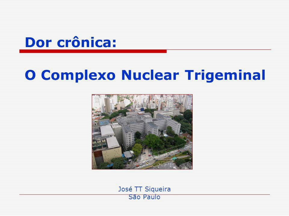 Dor crônica: O Complexo Nuclear Trigeminal José TT Siqueira São Paulo