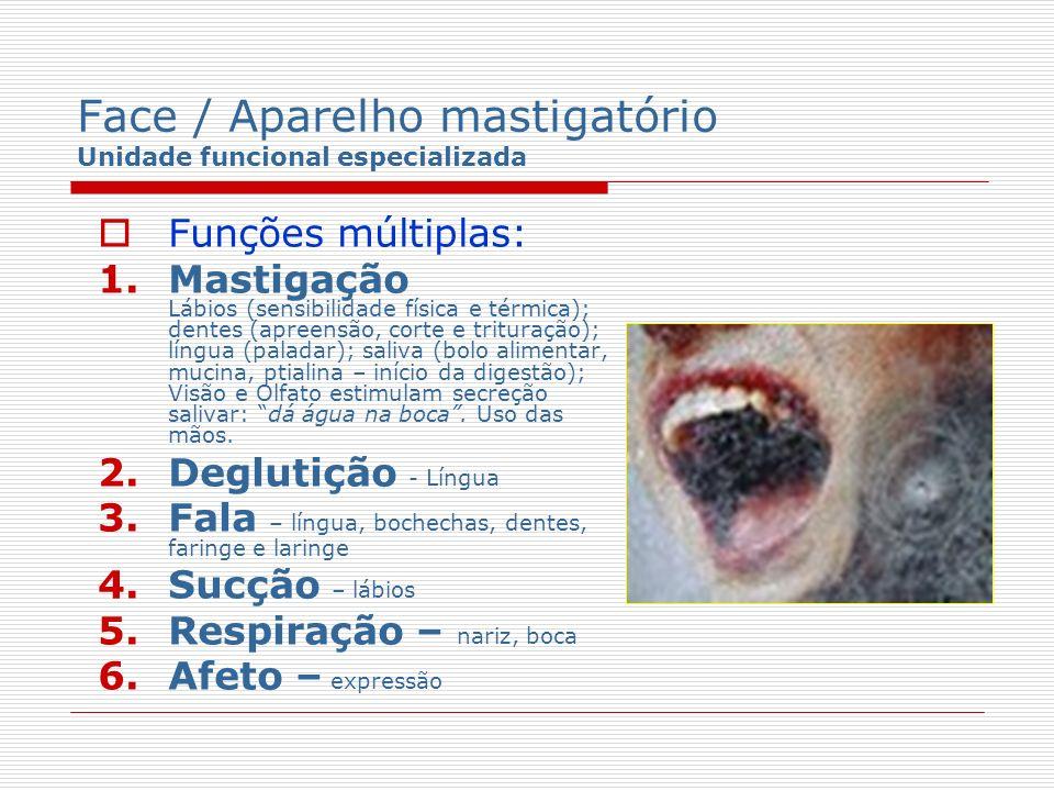 Face / Aparelho mastigatório Unidade funcional especializada Funções múltiplas: 1.Mastigação Lábios (sensibilidade física e térmica); dentes (apreensã