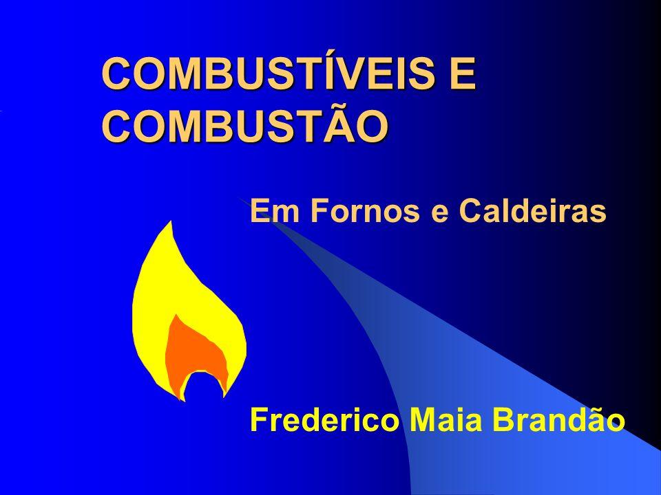 COMBUSTÍVEIS E COMBUSTÃO Em Fornos e Caldeiras Frederico Maia Brandão