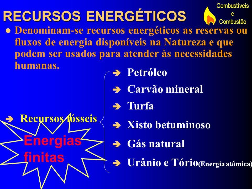 Combustíveis e Combustão RECURSOS ENERGÉTICOS Denominam-se recursos energéticos as reservas ou fluxos de energia disponíveis na Natureza e que podem s
