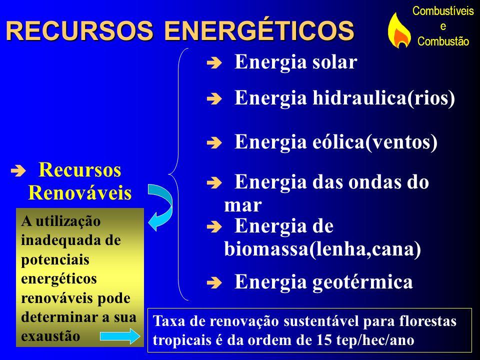 Combustíveis e Combustão RECURSOS ENERGÉTICOS Recursos Renováveis Energia solar Energia hidraulica(rios) Energia eólica(ventos) Energia das ondas do m