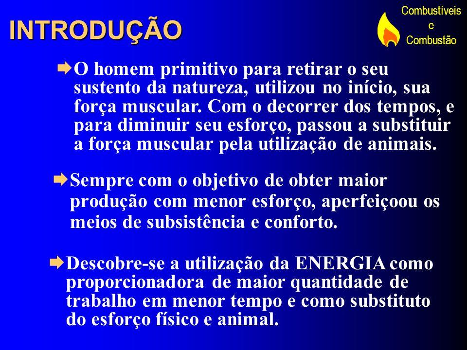 Combustíveis e Combustão COMBUSTÍVEIS INDUSTRIAIS CONDIÇÕES : DISPONIBILIDADE – EXISTA EM GRANDES UANTIDADES E FACIILIDADE DE OBTENÇÃO BAIXO CUSTO – PREÇO ACESSÍVEL NO LOCAL DE CONSUMO E BAIXO CUSTO DE OPERAÇÃO APLICABILIDADE – SE OBTENHA COMBUSTÃO COM OS RECURSOS EXISTENTES E FACILIDADE DE USO MANUSEABILIDADE – SEGURANÇA NO ARMAZENAMENTO E TRANSPORTE RENDIMENTO – PODER CALORÍFCO NÃO MUITO BAIXO