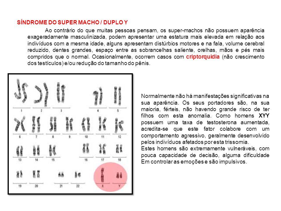 01-Examine as seguintes afirmativas referentes ao ciclo celular: I) Quando uma célula sai da subfase S da interfase, apresenta o dobro de DNA.