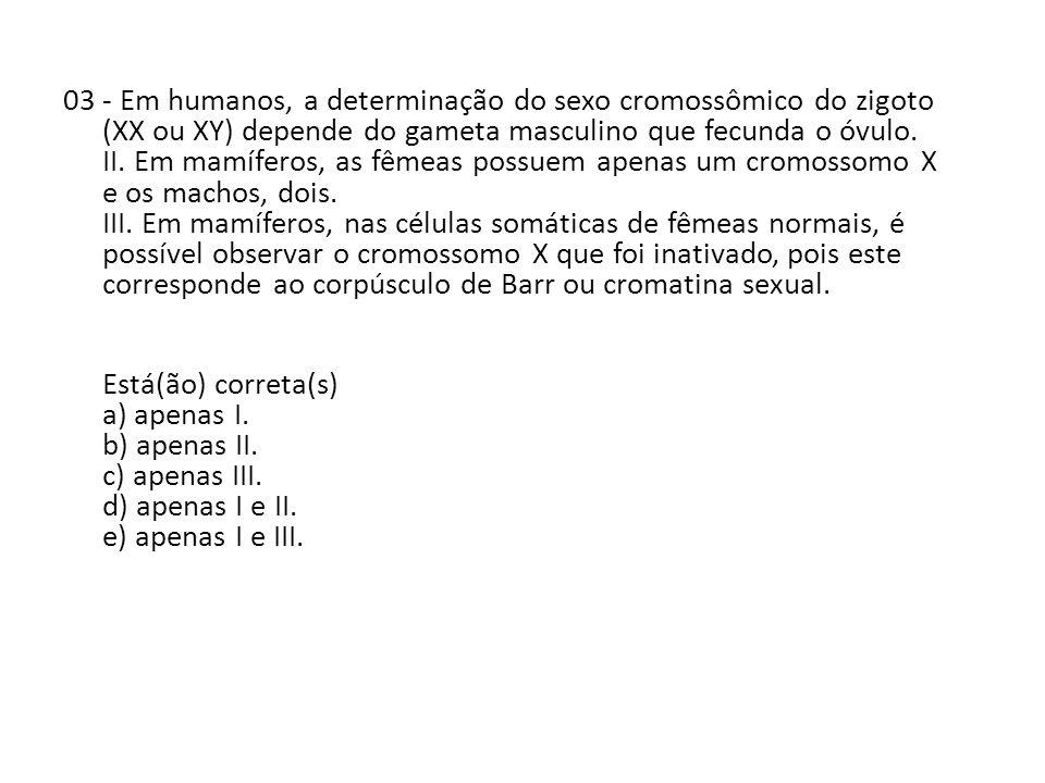 04 - O núcleo é uma estrutura que coordena e comanda todas as funções celulares.