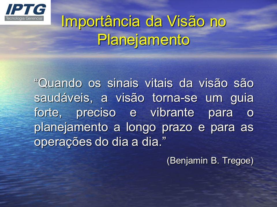 Importância da Visão no Planejamento Quando os sinais vitais da visão são saudáveis, a visão torna-se um guia forte, preciso e vibrante para o planeja