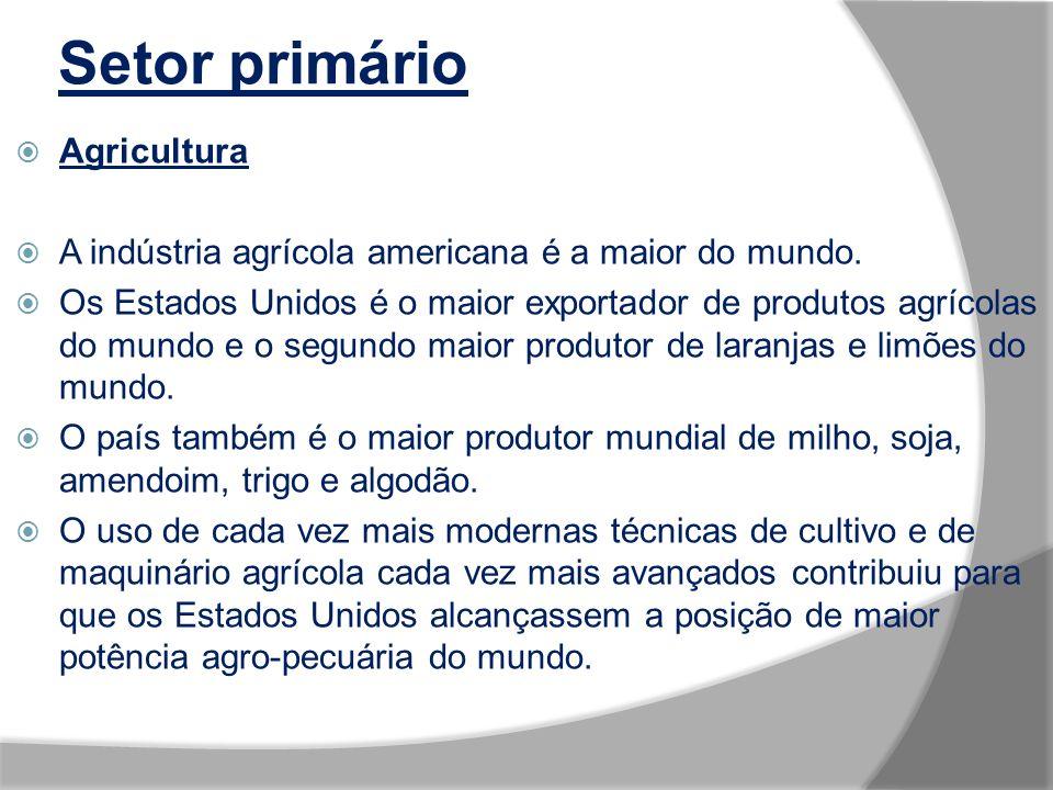 Setor primário Agricultura A indústria agrícola americana é a maior do mundo.