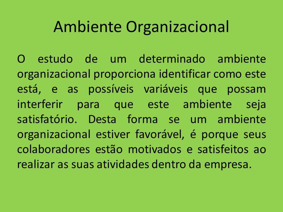 Ambiente Organizacional O estudo de um determinado ambiente organizacional proporciona identificar como este está, e as possíveis variáveis que possam