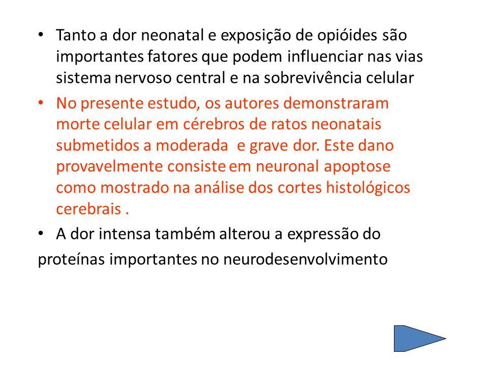 Tanto a dor neonatal e exposição de opióides são importantes fatores que podem influenciar nas vias sistema nervoso central e na sobrevivência celular