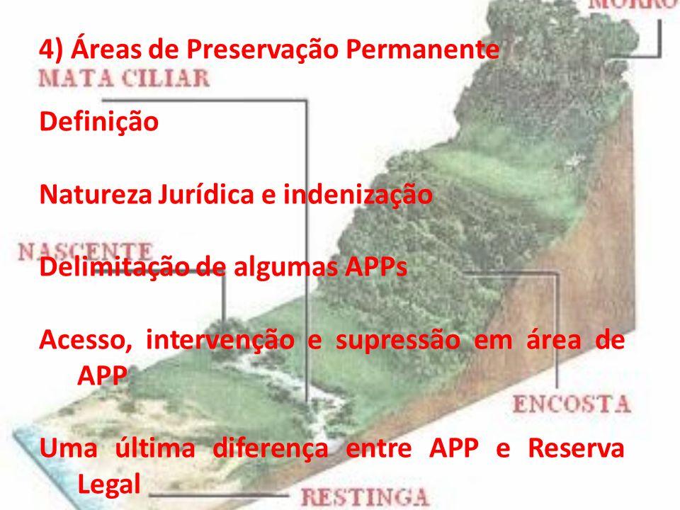 4) Áreas de Preservação Permanente Definição Natureza Jurídica e indenização Delimitação de algumas APPs Acesso, intervenção e supressão em área de AP