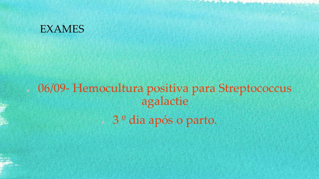 EXAMES 06/09- Hemocultura positiva para Streptococcus agalactie 3 º dia após o parto.