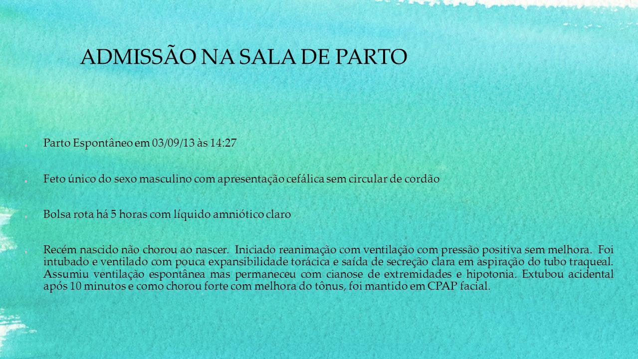 ADMISSÃO NA SALA DE PARTO Parto Espontâneo em 03/09/13 às 14:27 Feto único do sexo masculino com apresentação cefálica sem circular de cordão Bolsa ro