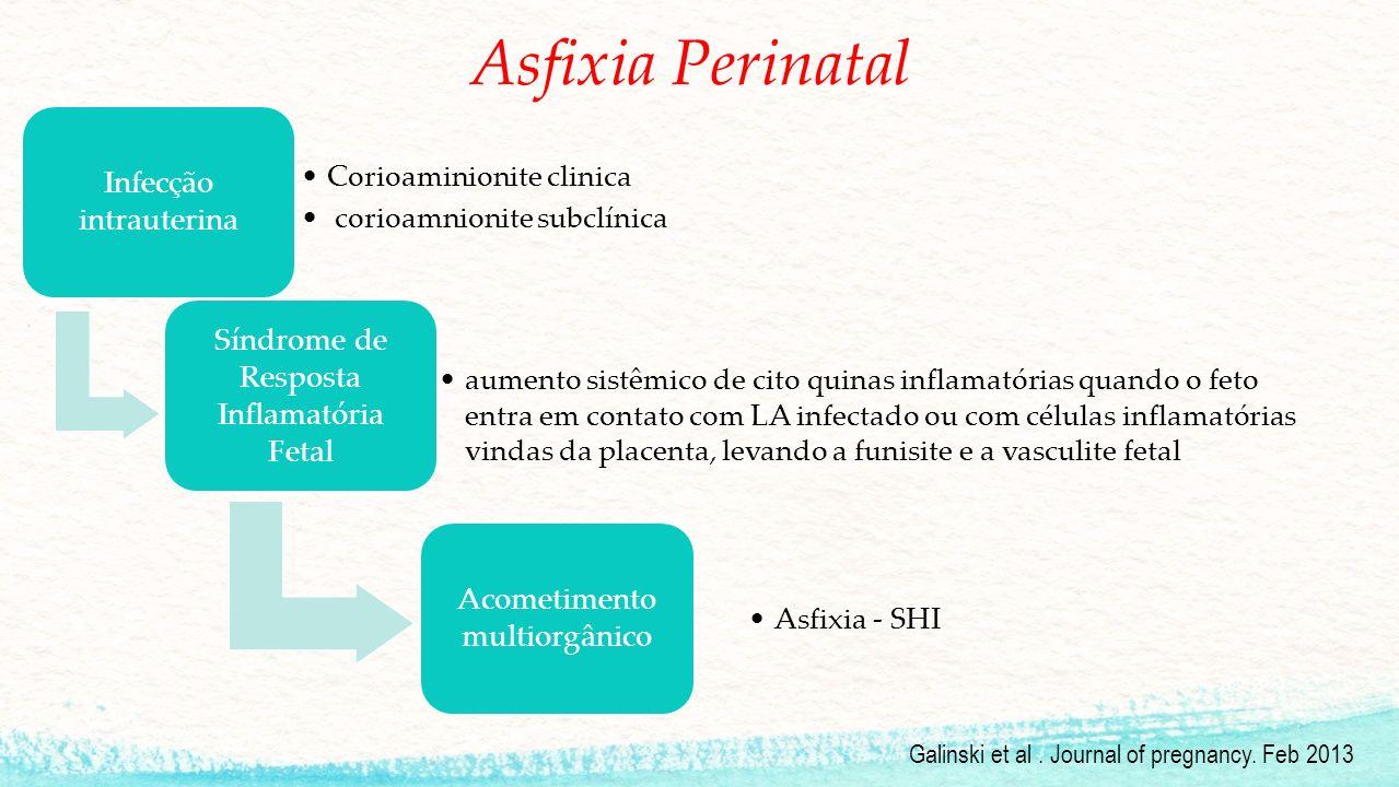 Asfixia Perinatal Infecção intrauterina Corioaminionite clinica corioamnionite subclínica Síndrome de Resposta Inflamatória Fetal aumento sistêmico de cito quinas inflamatórias quando o feto entra em contato com LA infectado ou com células inflamatórias vindas da placenta, levando a funisite e a vasculite fetal Acometimento multiorgânico Asfixia - SHI Galinski et al.