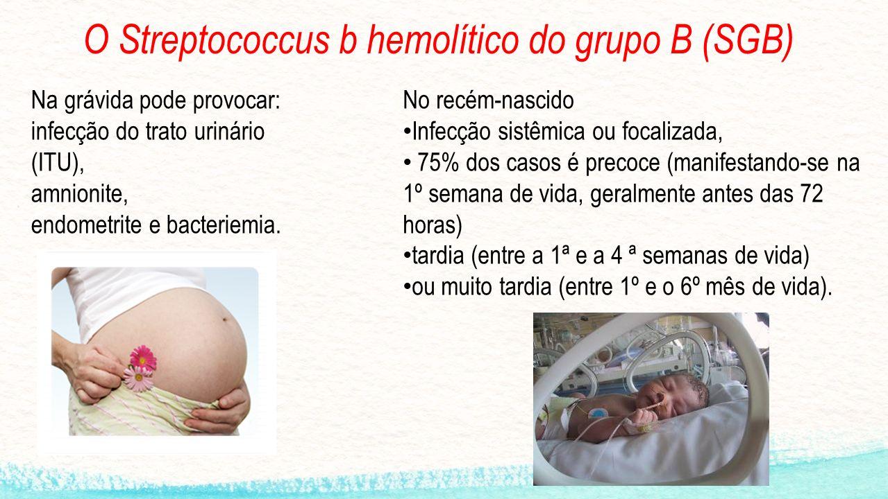 O Streptococcus b hemolítico do grupo B (SGB) Na grávida pode provocar: infecção do trato urinário (ITU), amnionite, endometrite e bacteriemia.