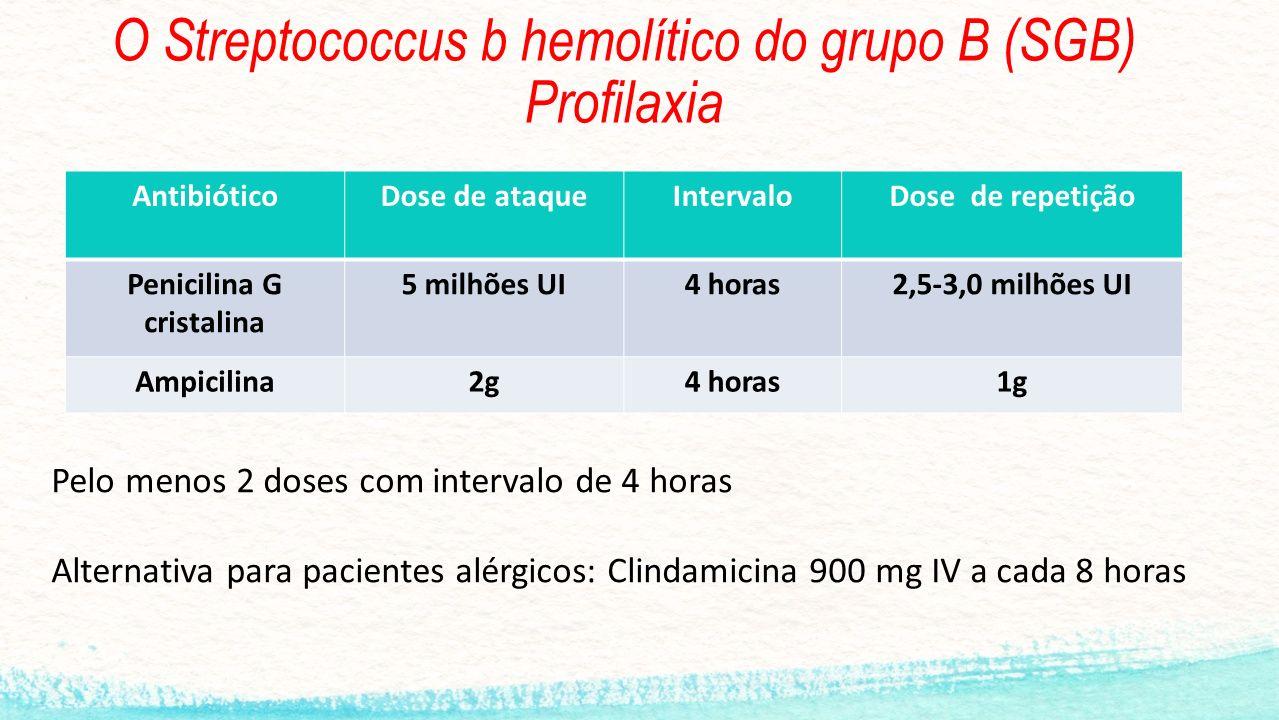 O Streptococcus b hemolítico do grupo B (SGB) Profilaxia AntibióticoDose de ataqueIntervaloDose de repetição Penicilina G cristalina 5 milhões UI4 hor