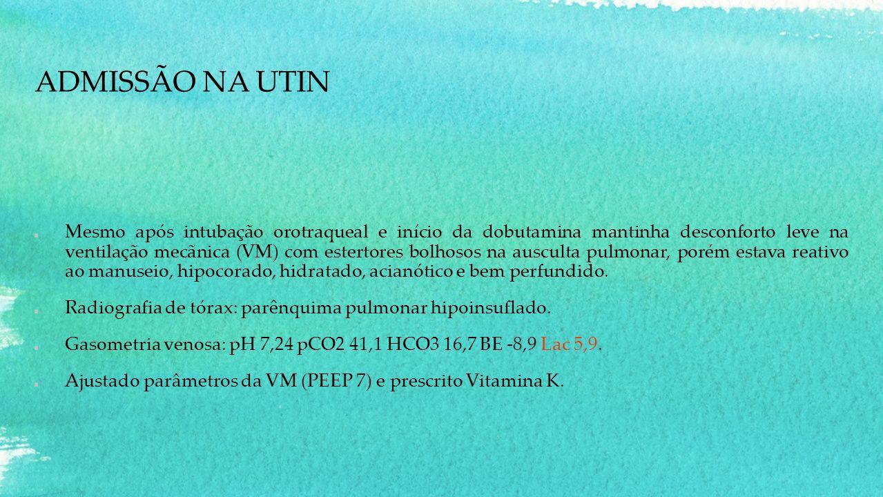 ADMISSÃO NA UTIN Mesmo após intubação orotraqueal e início da dobutamina mantinha desconforto leve na ventilação mecãnica (VM) com estertores bolhosos