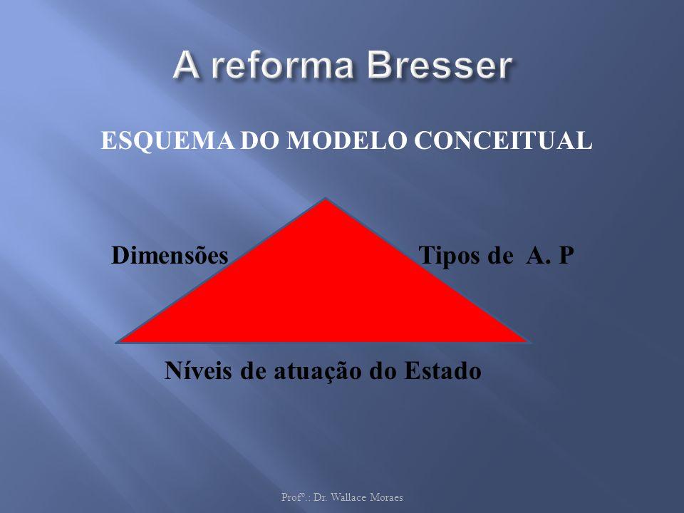 ESQUEMA DO MODELO CONCEITUAL Dimensões Tipos de A. P Níveis de atuação do Estado Profº.: Dr. Wallace Moraes