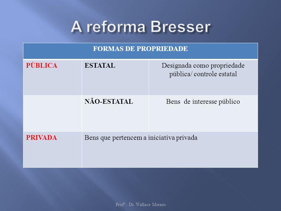 AS DIMENSÕES Profº.: Dr. Wallace Moraes FORMAS DE PROPRIEDADE PÚBLICAESTATALDesignada como propriedade pública/ controle estatal NÃO-ESTATALBens de in